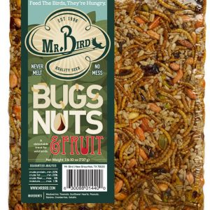 Mr. Bird Bugs Nuts and Fruit - small cake